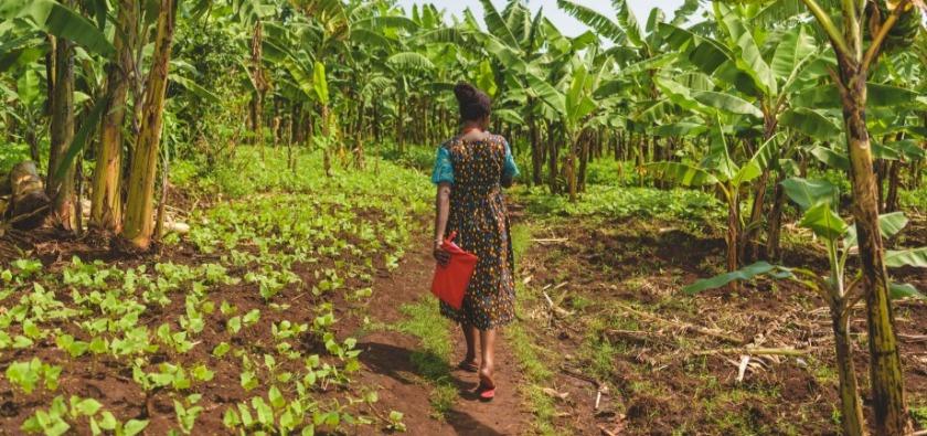 Girl walking through a village in Uganda.